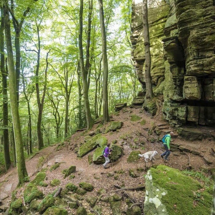Mullerthal ou la petite Suisse Luxembourgeoise